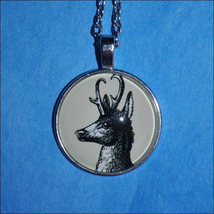 Jewelry - Silver Deer Dome Necklace